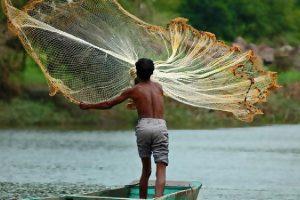 Indian Fisheries TPCI