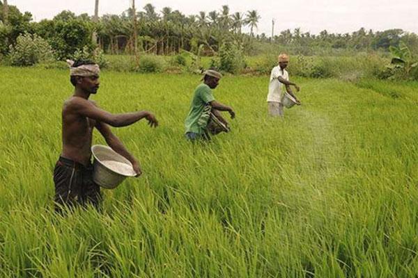 Rural-India_TPCI